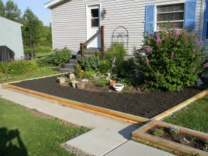 My Mobilehome Makeover gardening