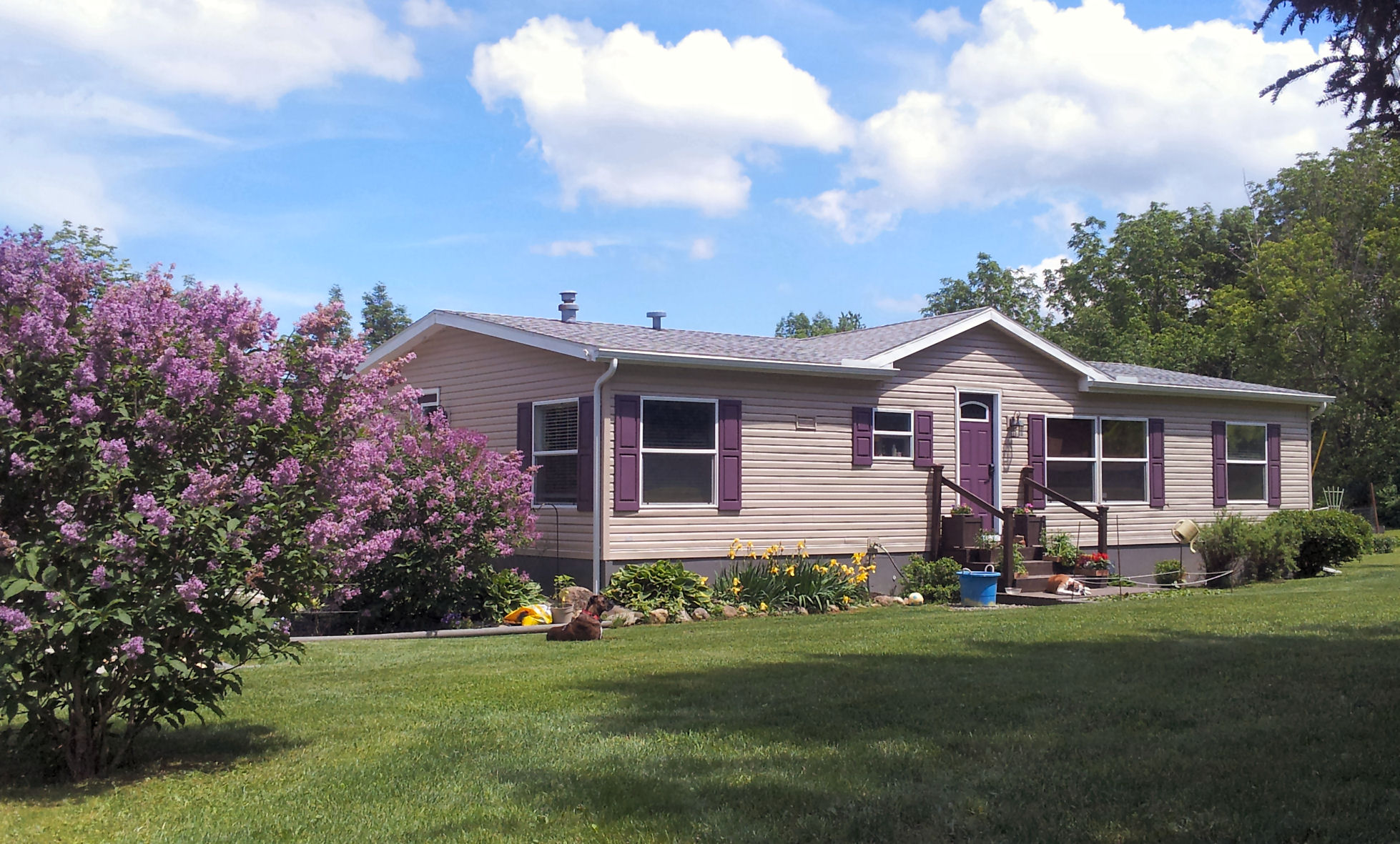 Can I Paint My Mobile Home? Yes I Can! - My Mobile Home Makeover Painting My House Exterior Colors on painting my stairs, painting my boat, painting my deck, painting my garage, painting my modern house,